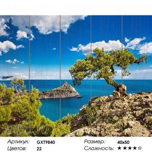 Количество цветов и сложность Голубая бухта Картина по номерам на дереве