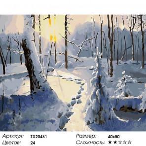 Количество цветов и сложность Игра теней Раскраска картина по номерам акриловыми красками на холсте