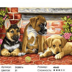 Количество цветов и сложность Друзья на век Раскраска картина по номерам акриловыми красками на холсте