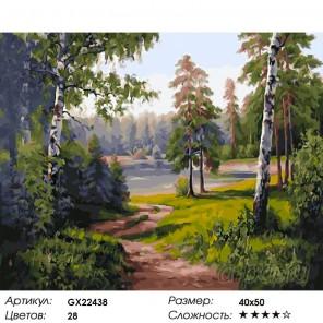 Количество цветов и сложность Лесная опушка Раскраска картина по номерам акриловыми красками на холсте