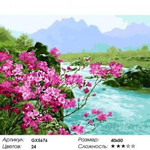 Быстрая река Раскраска картина по номерам на холсте