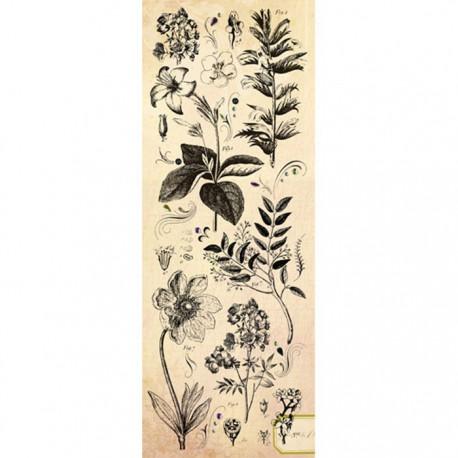Флора и фауна со стразами Натирка для скрапбукинга, кардмейкинга K&Company