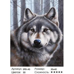 Волк Раскраска картина по номерам на холсте Белоснежка