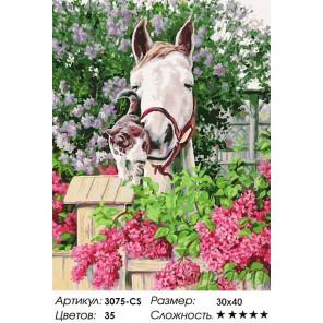 Количество цветов и сложность Нежная привязанность Раскраска картина по номерам на картоне Белоснежка
