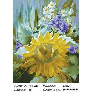 Количество цветов и сложность Подсолнух Раскраска картина по номерам на холсте Белоснежка