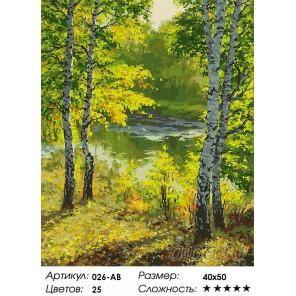 Подмосковье Раскраска ( картина ) по номерам на холсте Белоснежка