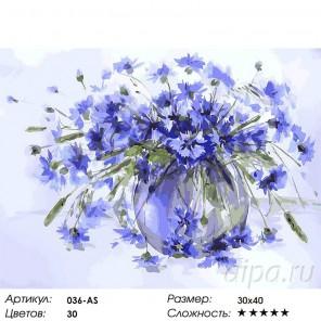 Василёчки-васильки Раскраска ( картина ) по номерам на холсте Белоснежка