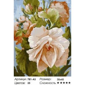 Роза Раскраска картина по номерам на холсте Белоснежка