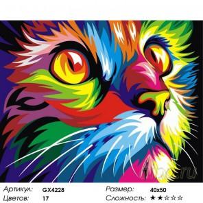 Радужный кот (Ваю Ромдони) Раскраска картина по номерам на холсте
