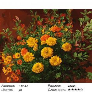 Количество цветов и сложность Нарядные бархатцы Раскраска картина по номерам на холсте Белоснежка