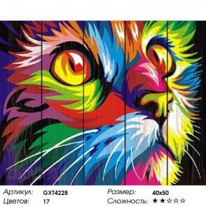 Радужный кот (Ваю Ромдони) Картина по номерам на дереве