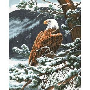 Белоголовый орлан Алмазная мозаика вышивка Painting Diamond