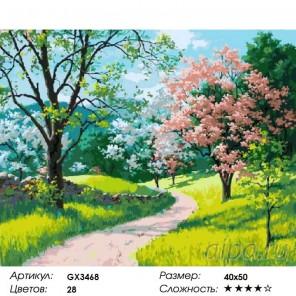 Чудесный сад Раскраска картина по номерам на холсте