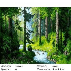 Студеный ручей Раскраска картина по номерам на холсте