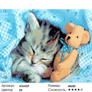 Сон котенка Раскраска картина по номерам на холсте