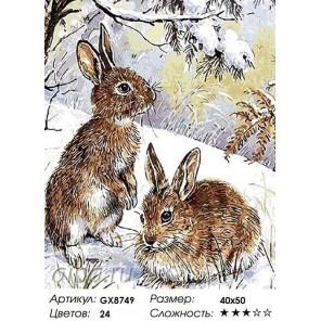Два зайца Раскраска картина по номерам на холсте