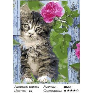 Котенок и роза Раскраска картина по номерам на холсте