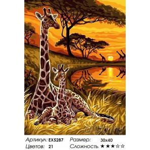 Жирафы на закате Раскраска картина по номерам на холсте
