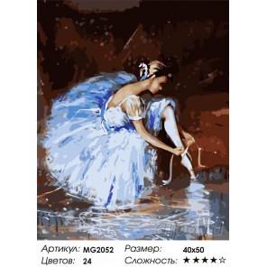 Количество цветов и сложность Подготовка к танцу Раскраска по номерам на холсте Menglei
