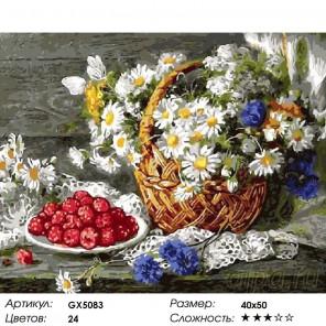 Малина и ромашки Раскраска картина по номерам на холсте
