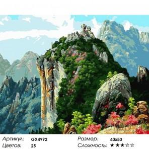 Количество цветов и сложность Зеленая скала Раскраска картина по номерам на холсте