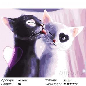 Кошачий Инь-Янь Раскраска картина по номерам на холсте
