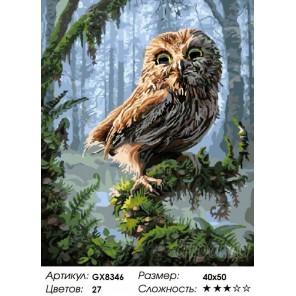 Совёнок в сказочном лесу (художник Фил Джэгер) Раскраска картина по номерам на холсте