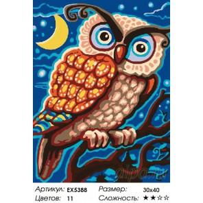 Количество цветов и сложность Грозный филин Раскраска картина по номерам на холсте