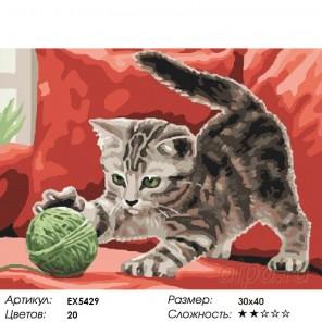 Котенок с клубком Раскраска картина по номерам на холсте