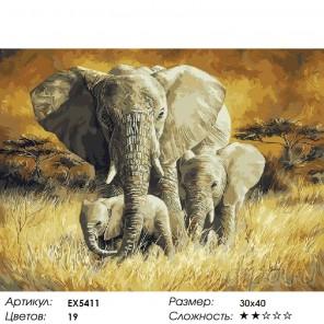 Слоны в саванне Раскраска картина по номерам на холсте