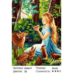 Лесные обитатели Раскраска картина по номерам на холсте
