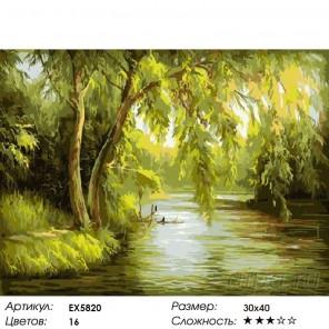 Плакучая ива над рекой Раскраска картина по номерам на холсте