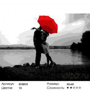 Количество цветов и сложность Под зонтом любви Раскраска картина по номерам на холсте