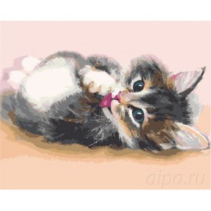 Милый котенок Раскраска картина по номерам на холсте Menglei