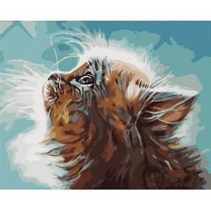 Котенок в мечтах Раскраска картина по номерам на холсте Menglei