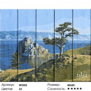 Количество цветов и сложность Байкальская жемчужина Картина по номерам на дереве Dali