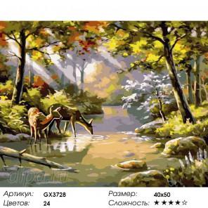 Количество цветов и сложность Олени на реке Раскраска картина по номерам на холсте