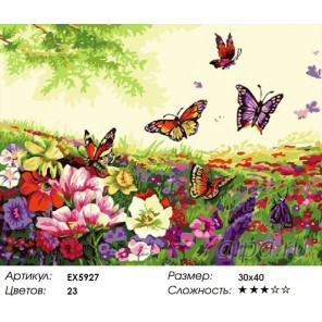 Количество цветов и сложность Бабочки на лугу Раскраска картина по номерам на холсте