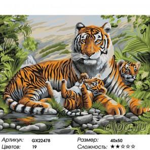 Братья тигры Раскраска картина по номерам на холсте