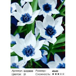 Тюльпаны голубое сердце Раскраска картина по номерам на холсте