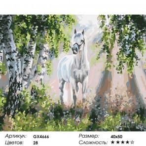 Количество цветов и сложность Белый конь Раскраска картина по номерам на холсте