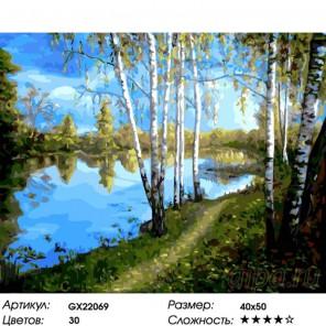 Количество цветов и сложность Стройные березки Раскраска картина по номерам на холсте