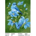 Пара птичек Раскраска картина по номерам на холсте
