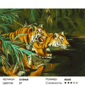Тигры у воды Раскраска картина по номерам на холсте