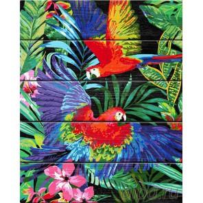 Яркие попугаи Картина по номерам на дереве Dali