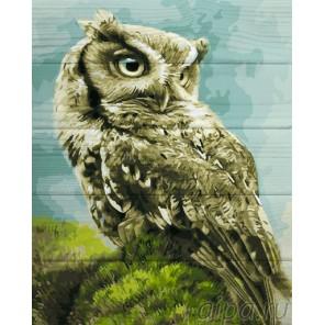 Лесная сова Картина по номерам на дереве