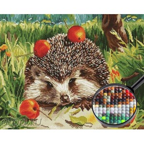 Ежик с яблоками Алмазная мозаика вышивка Painting Diamond