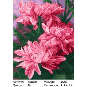 Количество цветов и сложность Малиновые пионы Раскраска картина по номерам на холсте