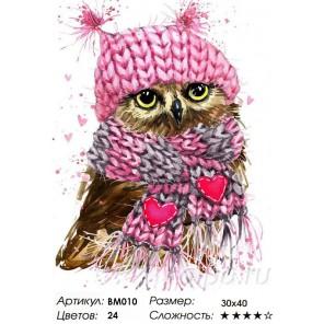 Милая совушка Раскраска - открытка по номерам  с декором Color Kit