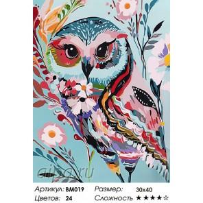 Количество красок и сложность Волшебная сова Раскраска - открытка по номерам с декором Color Kit